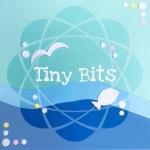 Tiny Bits