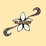 BLOSSOM ~北海道高校生ネットワーク~